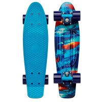 "Penny Makana Skateboard 22"""